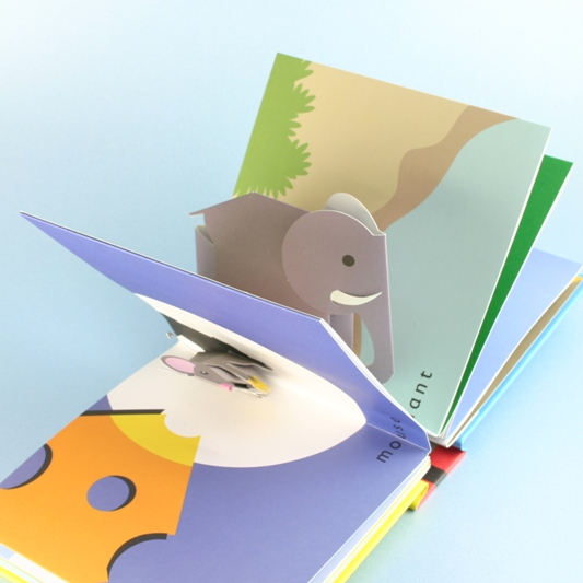 Animal Galley Book, Special Gift For Baby & Child