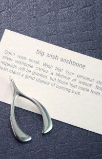 Wishbone In Silver