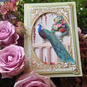 peacock card, special gift, birthday present