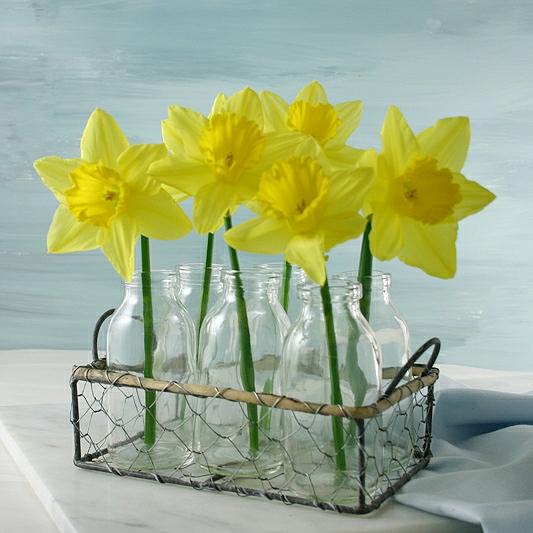 Milk Bottles Flower Basket With Daffodils