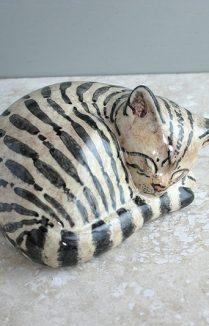 Brown Tabby Large Sleeping Cat
