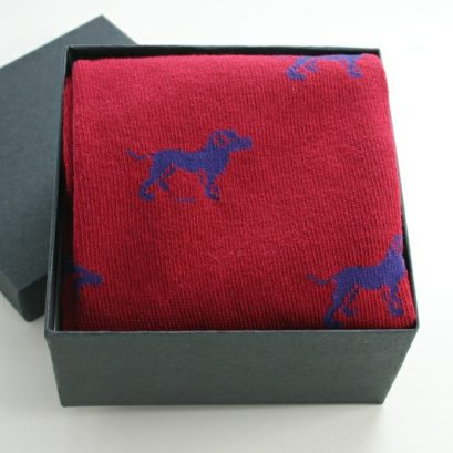 SOCKS IN A BOX DOG MOTIF