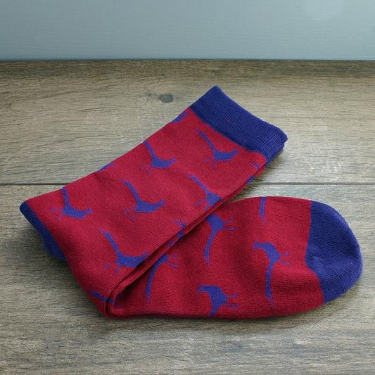 Socks In A Box Pheasant Motif