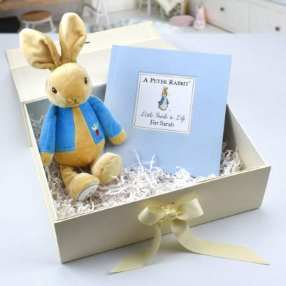 PETER RABBIT LITTLE GUIDE TO LIFE AND PLUSH TOY GIFT SET