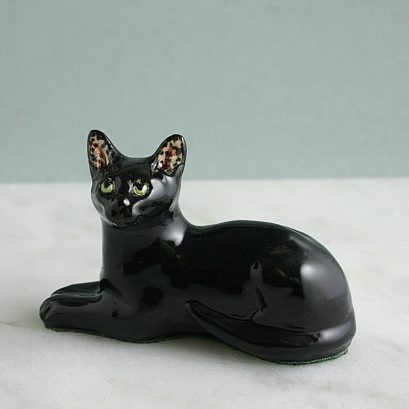 China Black Cat