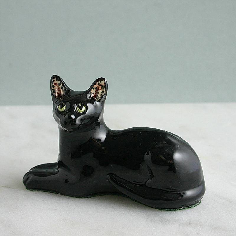 China Black Cat